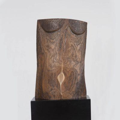 torso, wilgenhout