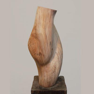 houten torse