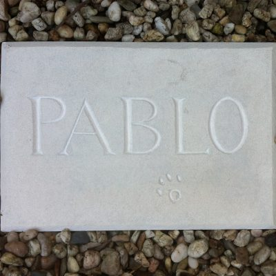 Franse kalksteen