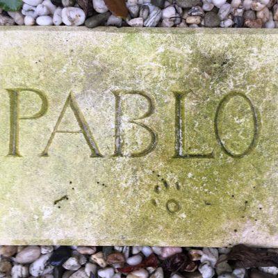 Franse kalksteen na 1 jaar